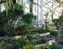 Globeplants bundle 14 : Tropical garden 02