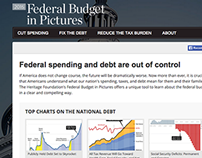 Federal Budget in Pictures Website