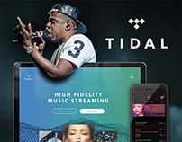 Tidal UI/UX Design Concept
