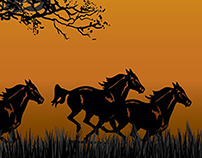 The Equine Practice - Equine Affaire Trade Show