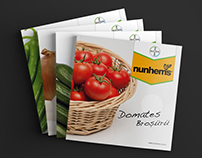 Vegetable Seeds Brochure Designs for Nunhems Turkey