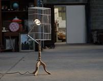 Bird, lamp.