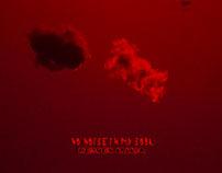 No Noise In My Soul-Herden Lollia / 1991-2016