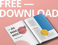 Magazine Mockup Freebie