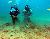 Getting ready for Your Diving Vacation