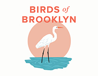 Birds of Brooklyn
