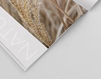 Nature - A Seasonal Transition Lookbook