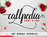 Callpedia 2 Styles + Bonus by Fittingline Type Supply