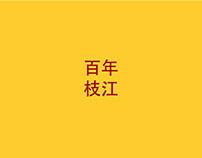2013年百年枝江酒全案推广