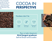 The cocoa journey