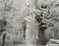 Land of Snow Queen