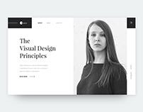 The Visual Design Principles