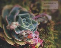Noel Barnhurst Magazine Spring Edition