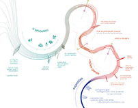 Infográfico de analise qualitativa