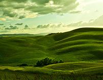 My Tuscany
