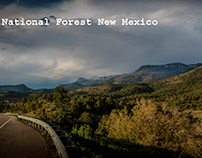 New Mexico Panorama