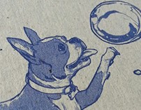 Dogs and Bubbles Cover