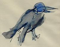 KARGAM VAR | i have a crow
