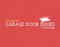 Garage Door Issues Info Graphic