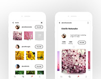 Profile and Search UI