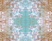 Kaleidoscope Memories