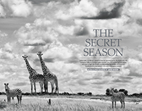 Getaway Feature 2017 (South Luangwa)