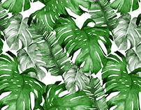 Tropical Leaves Pattern Designs
