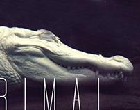 Primal Scream CD (2012)