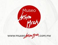 Museo Virtual Arturo Meza