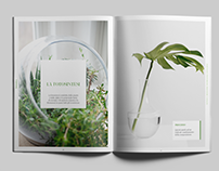 Botanica - Folio / Photobook