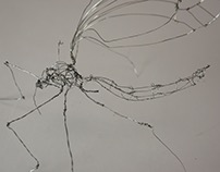 Wire Sculpture (Line Project)