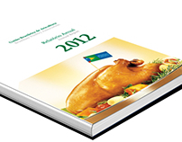 UBABEF relatório anual
