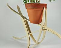 Bent Lamination Plant Holder