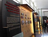 """Gráfica para sala """"Desarrollo Sustentable"""". MIDE."""