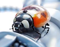 Ladybug Tring Promo