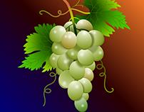 Uvas - Grapes