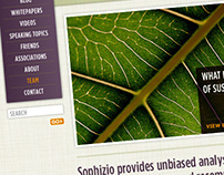 Sophizio Website Skin