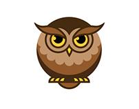 Owl by steps