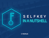 Infographic: Selfkey in the Nutshell
