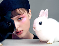 萌宠·美妆|PET&BEAUTY