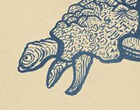 Malha - Criaturas Marinhas