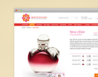 Web Design: BS Redesign Proposal - 2011
