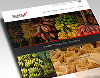 Spanish Food Solutions Website Design