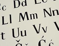 Fares Script Font & Delevic Display and Text Font