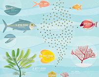La Cordata | Operazione Aquario