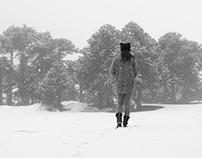 Araucarias - Nieve - Persona