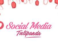 SOCIAL MEDIA - TULIPANDA