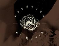 Estética D'Marie