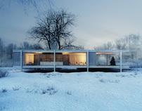 Winter Farnsworth Hause / 2013