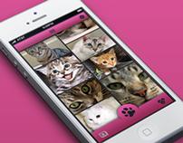 CatSnap App